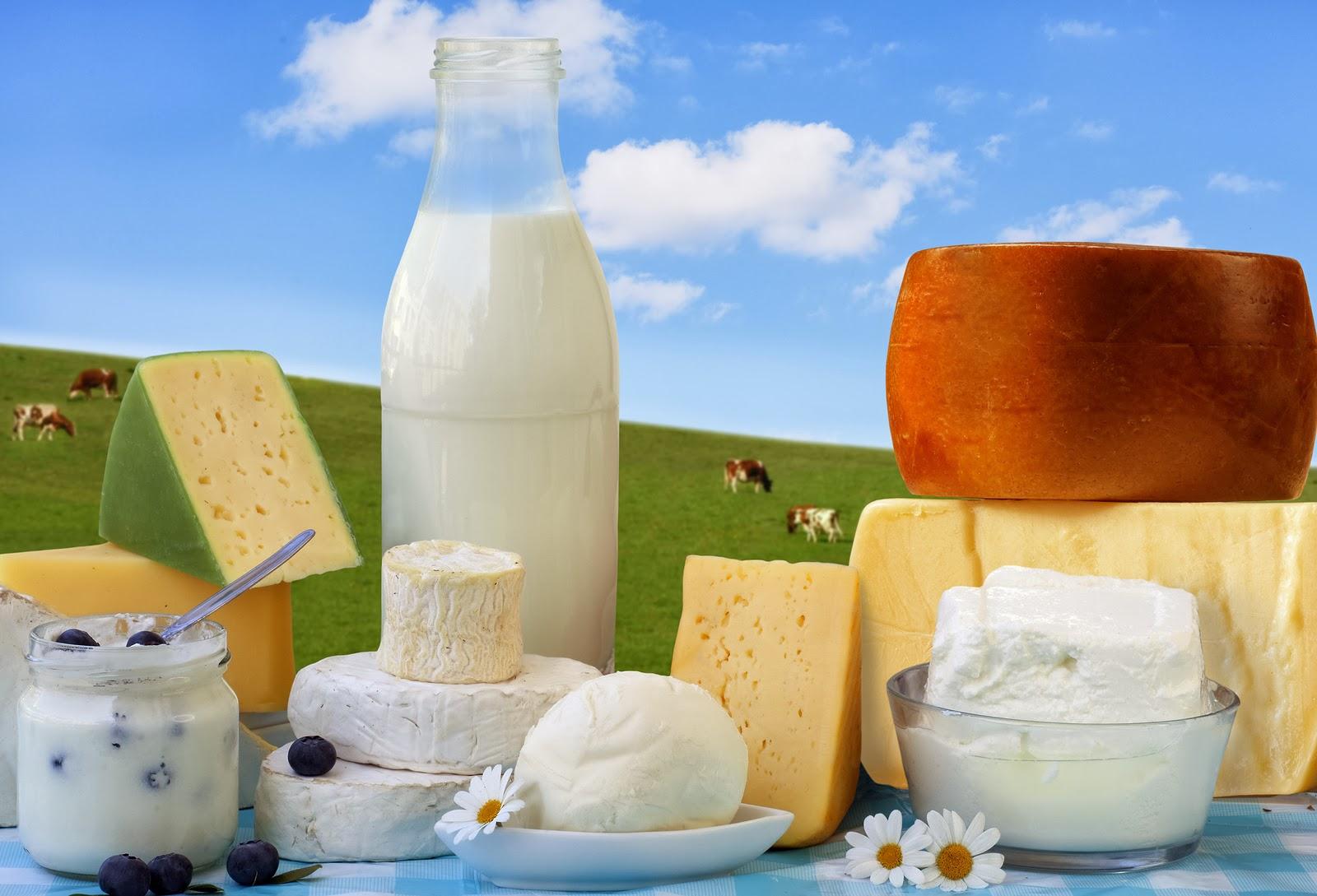 Modal Corpus: Dairy is my nemesis