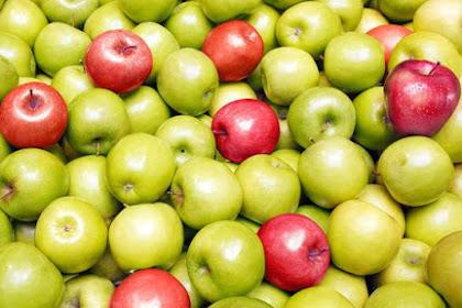 5 Manfaat buah Apel Merah dan Hijau untuk Orang Sakit