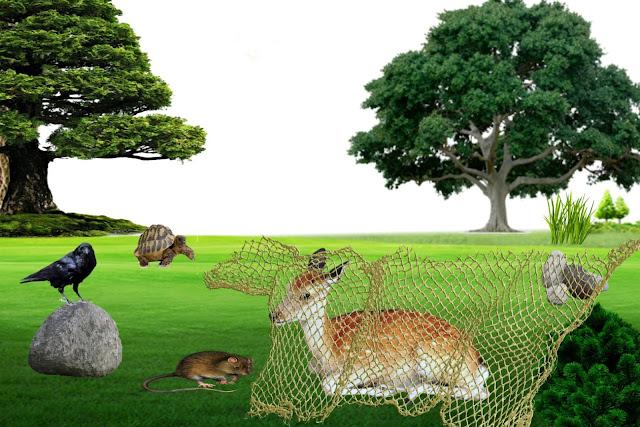 Deer, Tortoise, Rat and Crow frendship story, khargosh chuha kachua aur koye ki kahani
