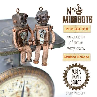 Capture a Minibot - Robin Davis Studio