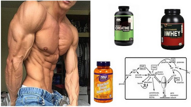 3 Effective Supplements to Build Muscle Mass