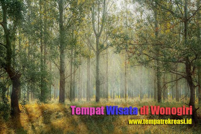 Tempat Wisata Yang Indah Di Wonogiri Jawa Tengah