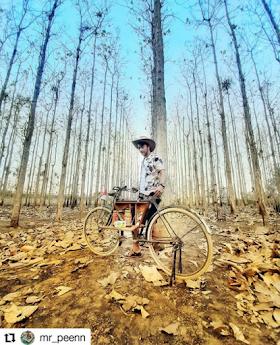 Jelajah Nusantara : Hutan jati lematang spot foto kekinian wajib di kunjungi