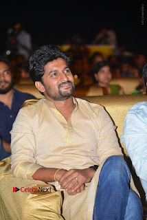 Nenu Local Audio Launch Stills  0061.JPG