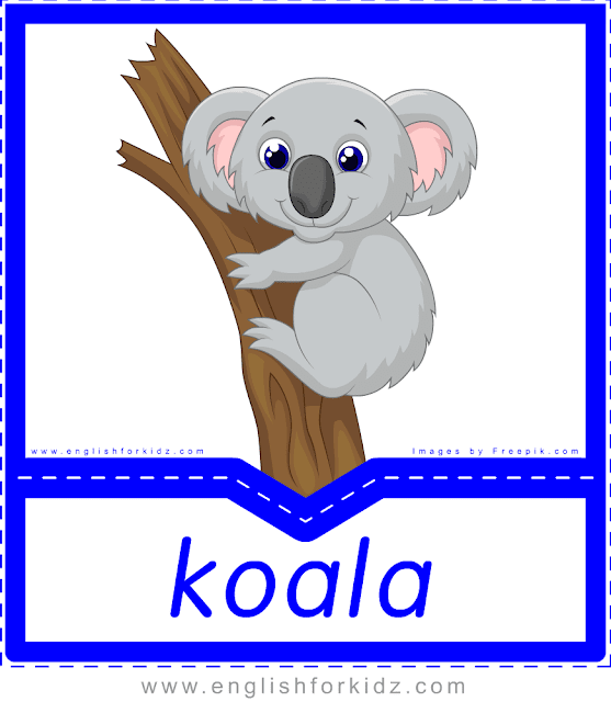 Koala - printable Australian animals flashcards for English learners