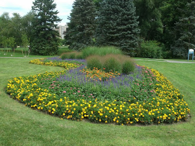 Mass of yellow and blue annuals James Garden kidney shaped bed by garden muses: a Toronto gardening blog