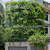 Cải tạo không gian xanh cho ngôi nhà phố 5 tầng