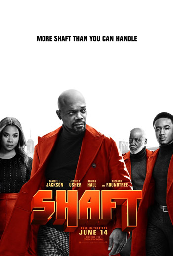 Shaft 2019 Dual Audio ORG Hindi WEBHD 480p 300MB Esubs movie poster