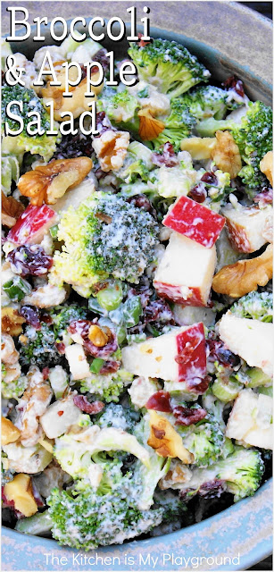 Broccoli & Apple Salad ~ Loaded with fresh broccoli, chopped apple, dried cranberries, crunchy walnuts, and a creamy Greek yogurt dressing, this Broccoli & Apple Salad is packed with great flavor. It's perfect for enjoying with any Fall dinner ... or all-year-round!  www.thekitchenismyplayground.com