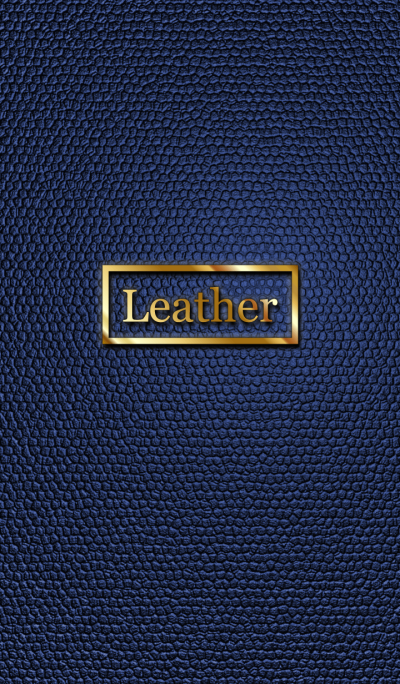 Blue Leather Theme WV