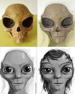 Reconstrucción del cráneo hallado en la isla danesa de sealandcon