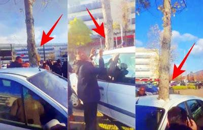"""صادم فيديو حير العالم…""""شجرة"""" تخترق """"سيارة"""" وسط ذهول الجميع"""