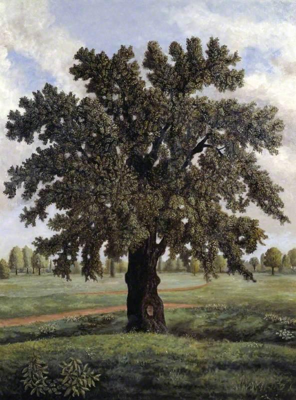 Zeus Oak Tree The tree...