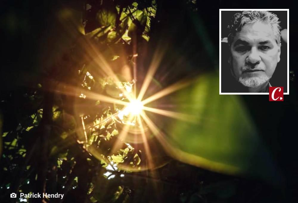 literatura paraibana conto chegada luz misterio estampido alberto lacet