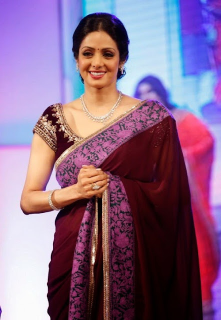 Sridevi in Manish Malhotra Saree at TSR TV9 Awards