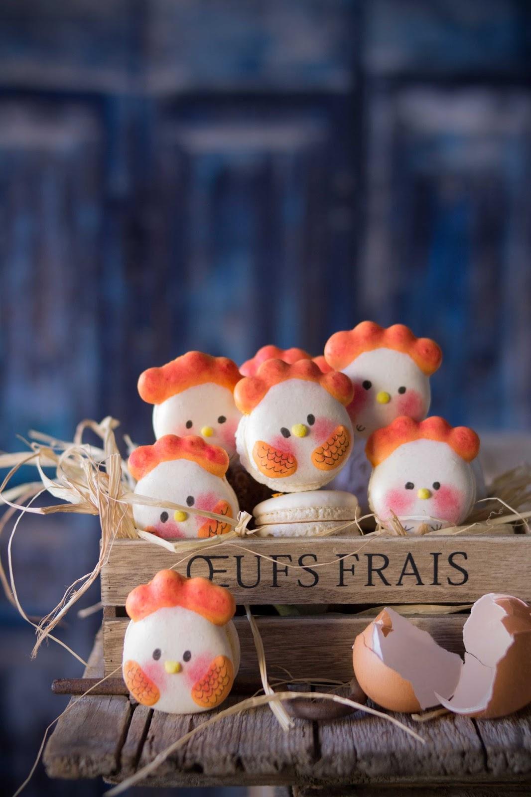 macarons pollito