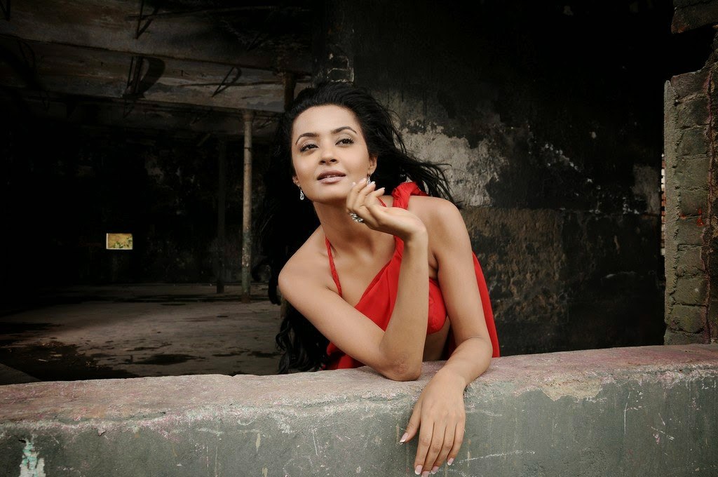 Actress Surveen Chawla Spicy Stills