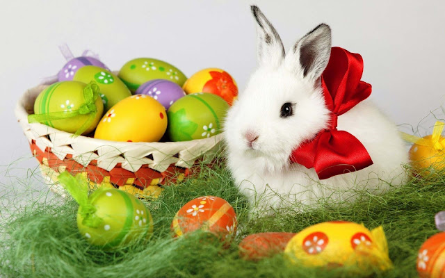 Happy Easter Day Greetings, Cards, Ecards Pics