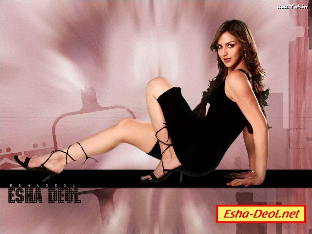 Bollywood Stars Hema Malini Tamil Hindi   Update IOS On Your