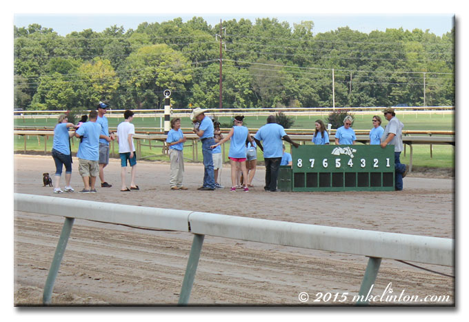 Miniature horse starting gate for Dachshund races