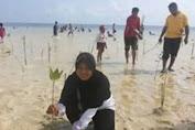 Guru dan Murid SD 91 Pasimasunggu, Tanam Mangrove Di Pantai Kayuanging