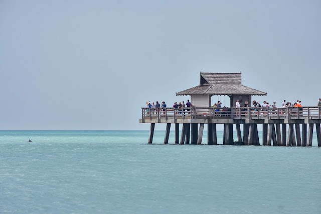 View of Naples Pier