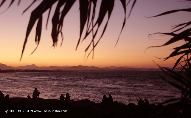 Silhouettes of palm tree leaves and people, looking at how the sun sinks into the ocean and painting the scenery in orange and purple.