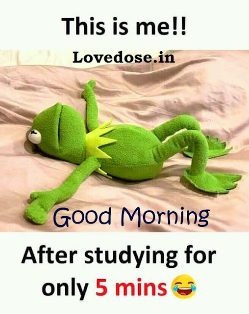 Funny Good Morning Wishes - Messages