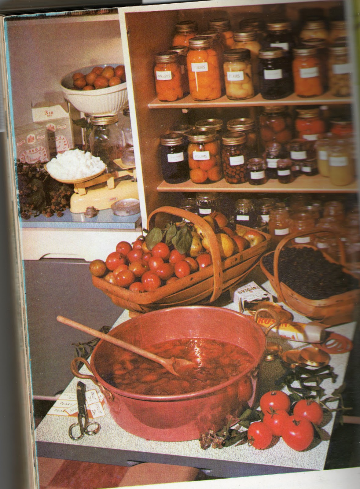 retro food cupboard larder recipes pans jams preserving foods jars