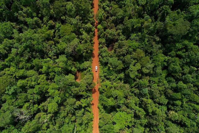 Rừng mưa nhiệt đới Amazon là khu rừng lớn nhất thế giới, bao phủ gần hết lưu vực sông Amazon với diện tích 5,5 triệu km2, chủ yếu nằm trong lãnh thổ Brazil (60%). Phần còn lại của rừng Amazon thuộc Peru, Colombia, Venezuela, Ecuador, Bolivia, Guyana, Surinam và Guyana thuộc Pháp.