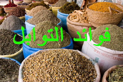 After this scientific study you will not neglect to add spices to your food