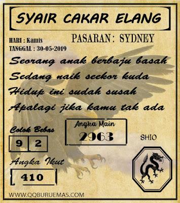 SYAIR SYDNEY 30-05-2019