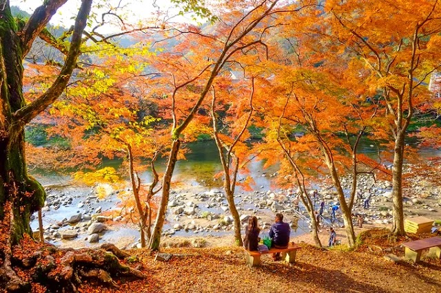 7 'paradise' in Northeast Asia to admire autumn