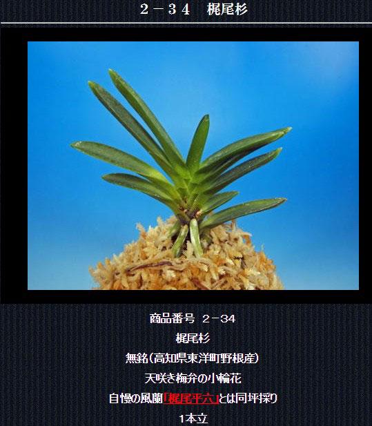 http://www.fuuran.jp/2-34.html