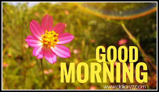 Good Morning Status and Quotes