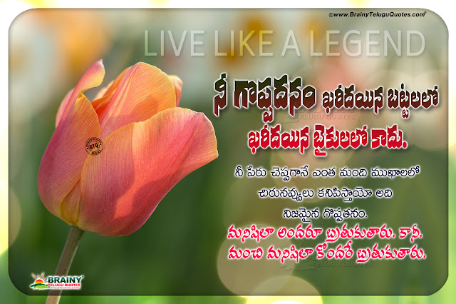 telugu quotes, famous words on life in telugu, nice life changing words, be like a gentle ever messages in telugu