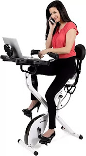 FitDesk Adjustable Folding Exercise Bike