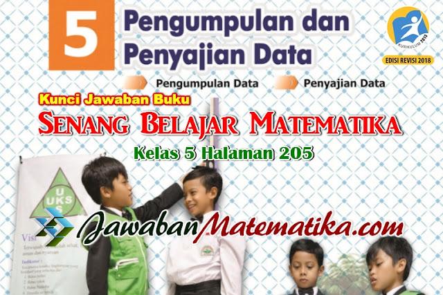 Jawaban Matematika Kelas 5 Halaman 205