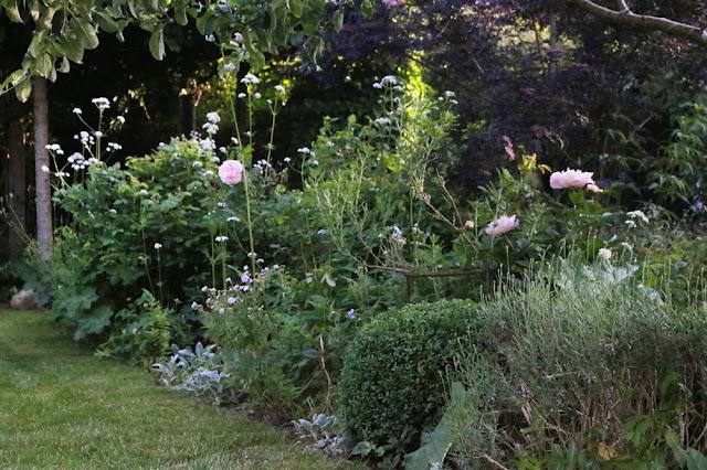 Slip vildskaben løs i haven og skab poetiske oplevelser