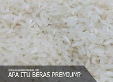 Apa sih Beras Premium itu?