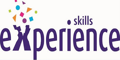 What Skills And Experience Are Required
