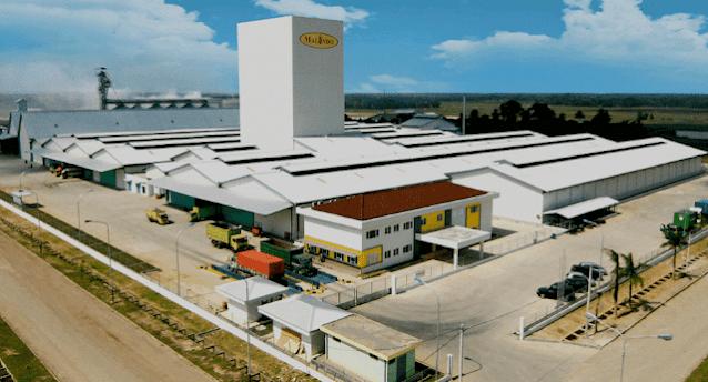 Lowongan Kerja PT Malindo Feedmill Tbk Penempatan Cikande Serang