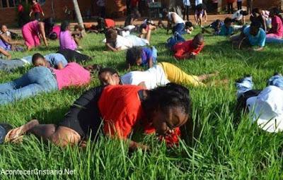 Congregación come pasto