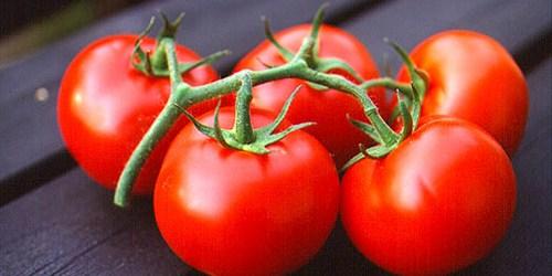 manfaat buah tomat untuk kulit wajah