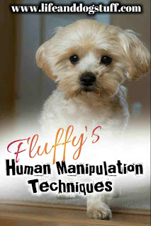Fluffy's Human Manipulation Techniques