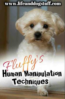 Fluffy's Human Manipulation Techniques