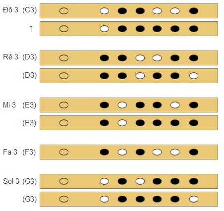 Cách bấm nốt sáo trúc quãng 3 của sáo 6 lỗ
