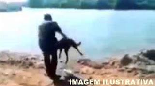 Ivaiporã: Homem é denunciado após jogar cachorro dentro de um rio