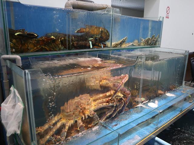 IMG 1582 - 二訪東港活海產│現點現撈,每樣餐點都超級新鮮,必點龍蝦味噌鍋