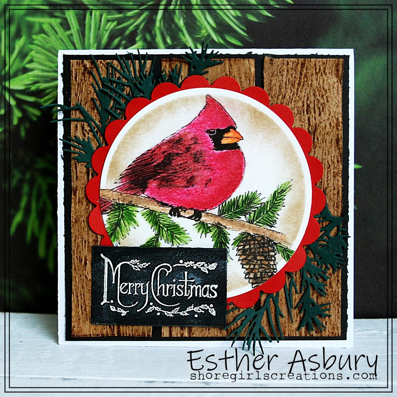 Merry Christmas In July Images.Shoregirl S Creations Merry Christmas In July